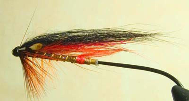 креветка для ловли лосося