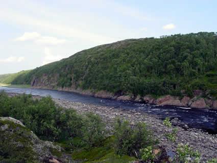 Основной заход рыбы в эти реки